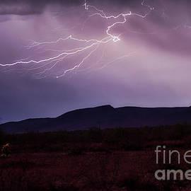Night Lightning by Mark Jackson
