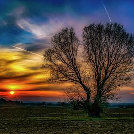 Plamen Petkov - Sunset