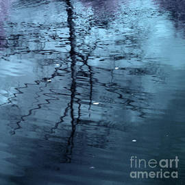 Ron Evans - Woodland Pond Series