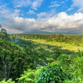 Jijo George - Bali Landscape