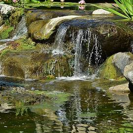 7 Lily Pond Waterfall I