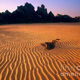 Edmund Nagele - A Beach Too Far