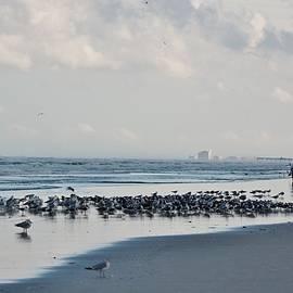 A Beautiful Stroll on the Beach by Patricia Twardzik