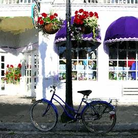 A Bicycle On Mackinac Island by Mel Steinhauer