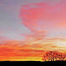 Jennie Marie Schell - A Blaze of Color Montana Morning