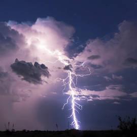 A Bolt of Lightning in the Desert Night by Derrick Neill