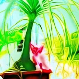 Debasis Kuila - A Cat2
