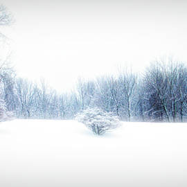 Aimee L Maher Photography and Art Visit ALMGallerydotcom - A Cold Winters Day City Flare