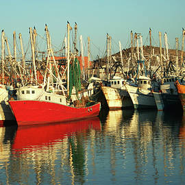 A Colorful Fleet of Docked Shrimp Boats by Derrick Neill