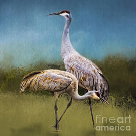 A Couple of Cranes by Janice Pariza