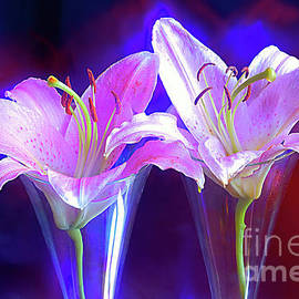A Couple Of Lilies. by Alexander Vinogradov