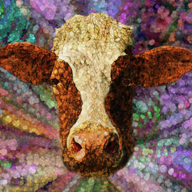 Jack Zulli - A Cows World