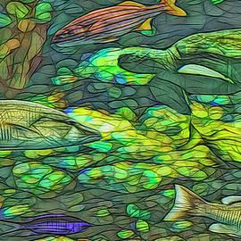 A Day At The Aquarium II