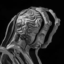 Joe Paradis - A Divided Mind