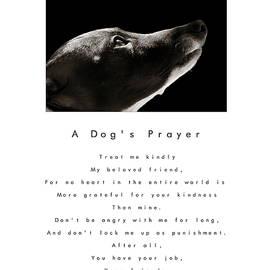 Angela Rath - A Dog