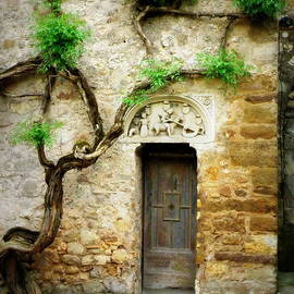 Lainie Wrightson - A Door in the Cloister