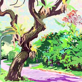 Plum Ovelgonne - A Singapore Tree