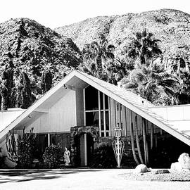 William Dey - A FRAME BW Palm Springs