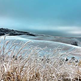David Patterson - A Frosty Morning on the Palouse