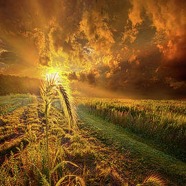 A Future Awaits All Those Who Seeks Peace - Phil Koch