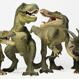 A Group of Six Dinosaurs in a Row by Derrick Neill