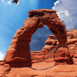 A Hawk at Delicate Arch, Arches National Park by Derrick Neill