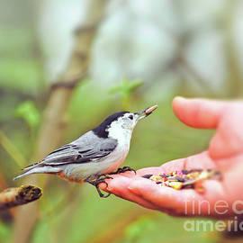 A Helping Hand by Kerri Farley