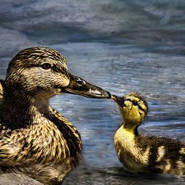 A Kiss From Mom by Janet Ballard