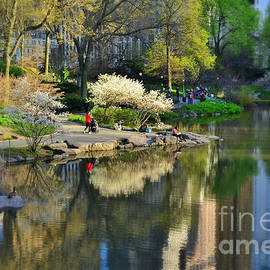 A Moment Alone - Central Park in Spring 2 by Miriam Danar