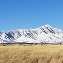 A Panorama of the Snowy Huachuca Mountains by Derrick Neill
