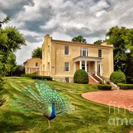 A Peacock At Beallair by Lois Bryan