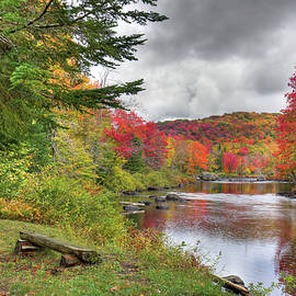 A Place To View Autumn by David Patterson