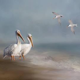 A Quiet Morning by Kim Hojnacki