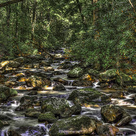 A River Through the Woods by Harry B Brown