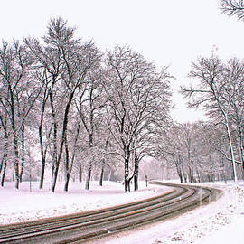 Kay Novy - A Road To Winter
