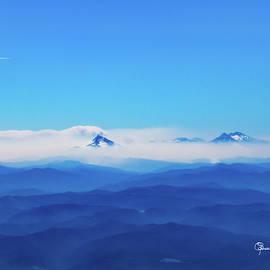 A Sea Of Mountains by Susan Molnar