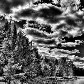 A September Afternoon at Twin Ponds by David Patterson