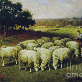 A shepherd with his sheep out in the field, 1898 - Charles T Phelan