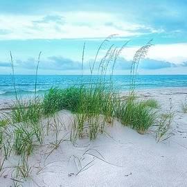 A Sleepy Blue Ocean by Rachel Hannah