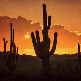 A Southwestern Sunset in Orange  by Saija Lehtonen