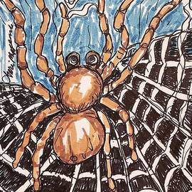 A Spider Building A Web by Geraldine Myszenski