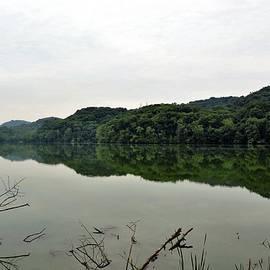 Deepa Sahoo - A Still Lake