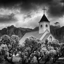 A Stormy Desert Afternoon in Black and White  by Saija Lehtonen
