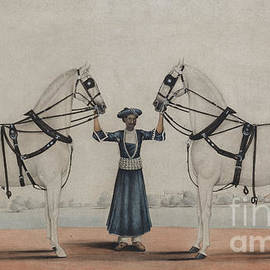 A Syce, groom, Holding Two Carriage Horses - Shaik Muhammad Amir of Karraya
