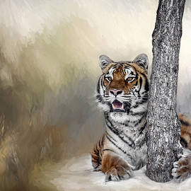 Wes and Dotty Weber - A Tiger and His Tree