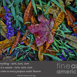 Jim Fitzpatrick - A Time To Every Purpose Under Heaven