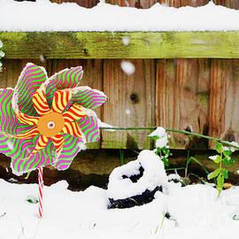 A toy windmill - Tom Gowanlock