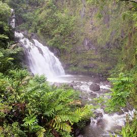 A View of Upper Waikani Falls on the Road to Hana, Maui, Hawaii by Derrick Neill