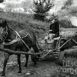 Yuri Lev - A Villager With His Horse and Cart, Ukraine
