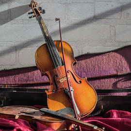 A Violin and its Shadow